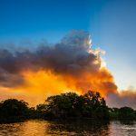 Comissão de Meio Ambiente da OAB SP publica nota técnica sobre as atuais queimadas no Pantanal e na Amazônia