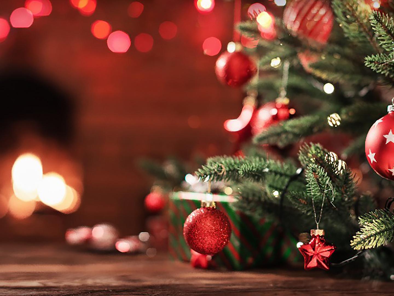 Árvore Solidária: projeto natalino da CAASP receberá doações para crianças com deficiência