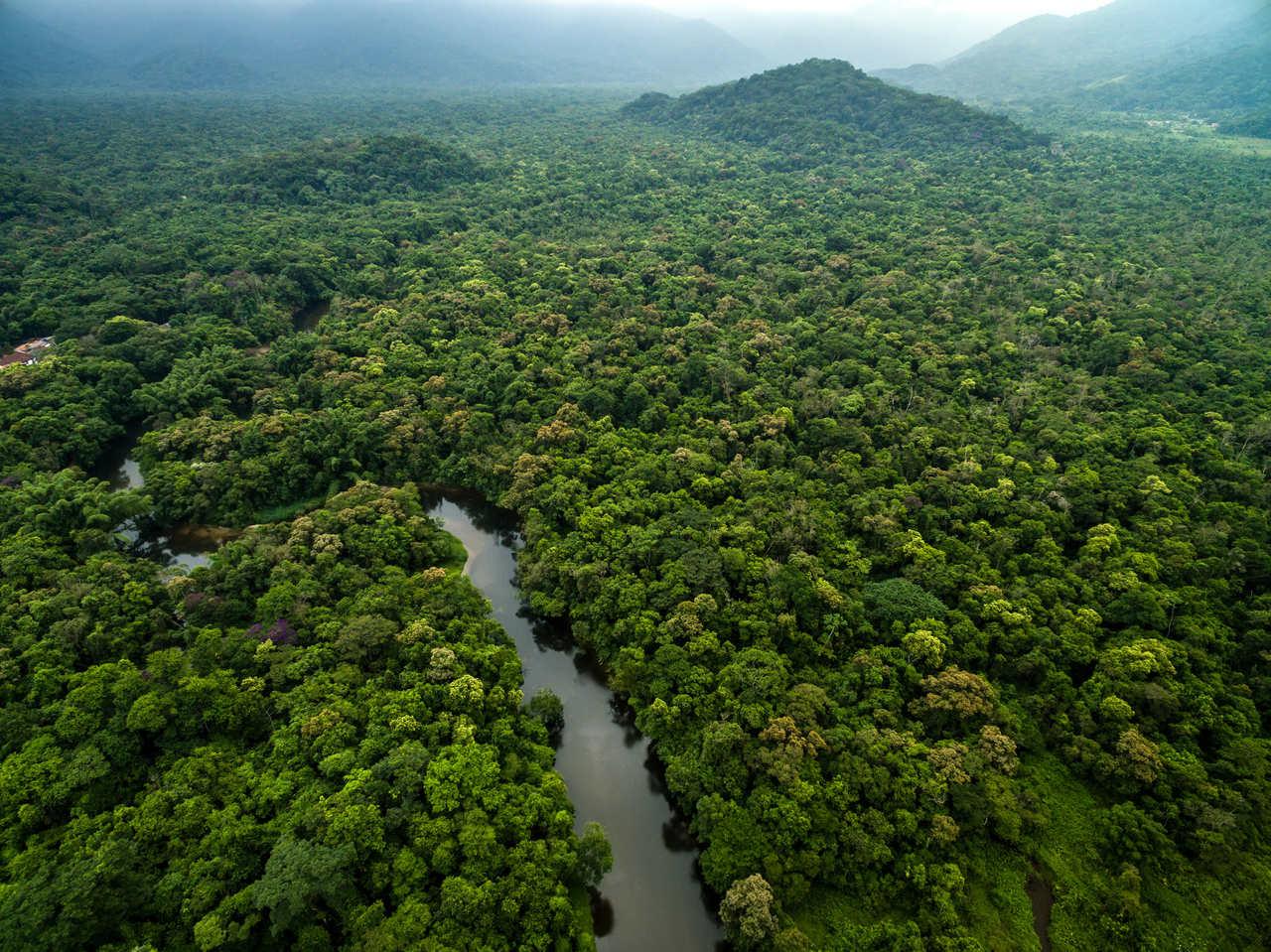 Comissão do Meio Ambiente da OAB São José dos Campos emite nota contrária à Lei 3.729/2004 com apoio de outras Subseções